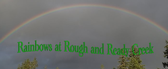 Rainbow 2014 at Rough and Ready Creek